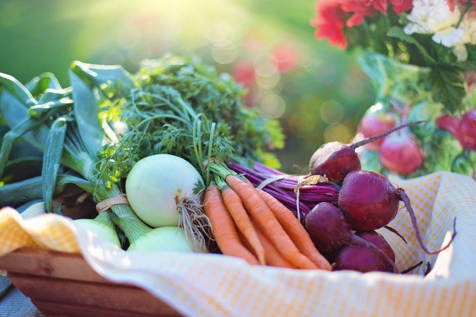 warzywa do obrania z naszego ogródka